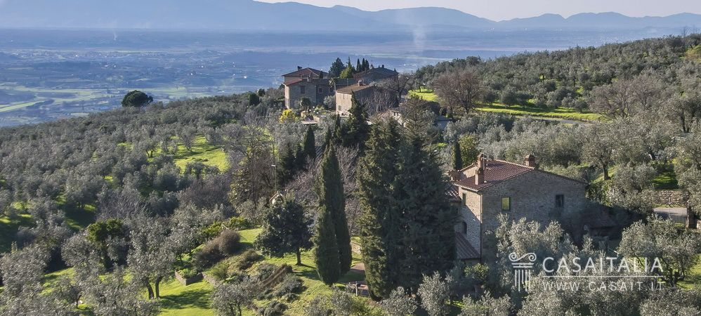 Farmhouse With Olive Grove For Sale In Vinci
