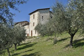 Farmhouse with olive grove for sale in Umbria