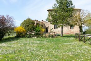 Farmhouse with outbuilding for sale in Tuscany, Buonconvento