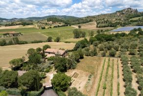 Farmhouse for sale between Perugia and Lake Trasimeno